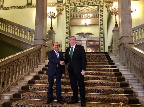 Minister leads 12 Enterprise Ireland companies on trade mission to Egypt