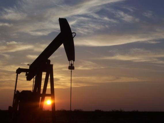 Oil rises despite fears of a global economic downturn
