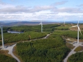 Ireland's largest wind farm enters commercial operation